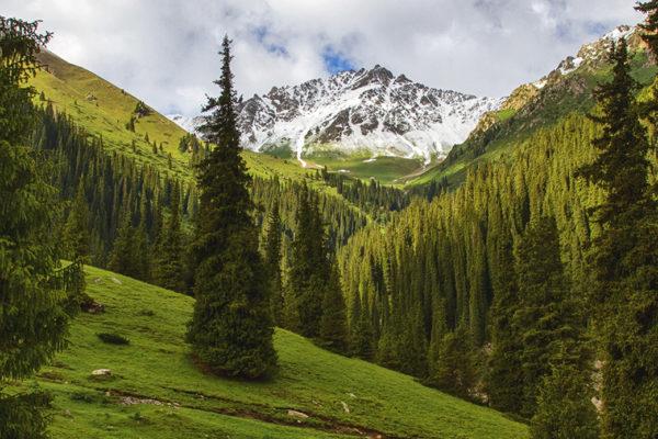 Altyn-Arashan Gorge