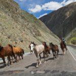 Too-Ashuu Pass