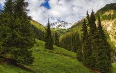 Ущелье Алтын-Арашан